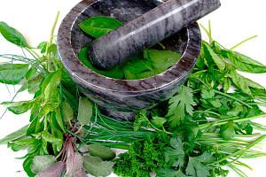 plantas-medicinales-para-subir-las-defensas