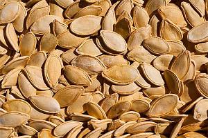 Propiedades Medicinales de las Semillas de Zapallo 10 Beneficios que Debes Conocerz