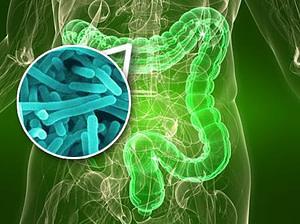 11 beneficios de los probióticos