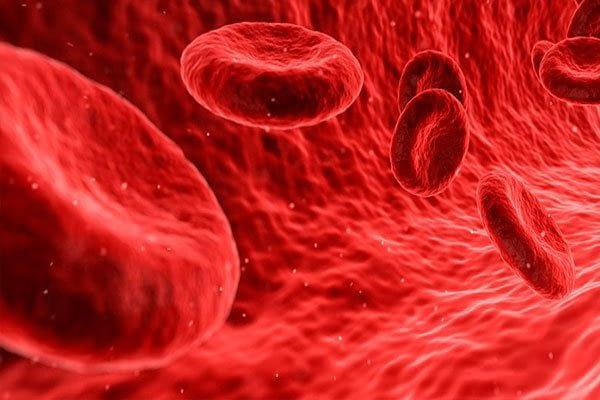para-que-sirve-la-vitamina-b12-sangre