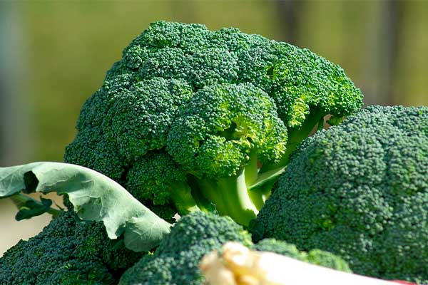 vitamina-c-en-el-brocoli-verdura
