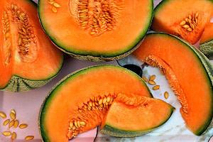 Beneficios del melón amargo y dulce